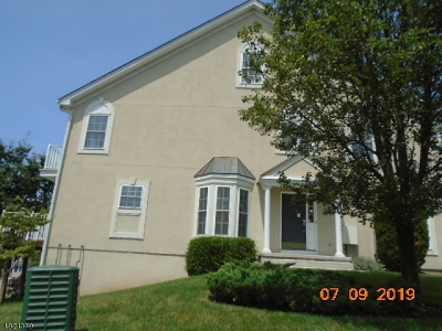 North Haledon Boro Condo/Townhouse For Sale: 48 Birchwood Ln