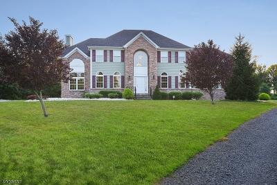 Hillsborough Twp. Single Family Home For Sale: 17 Eyring Rd