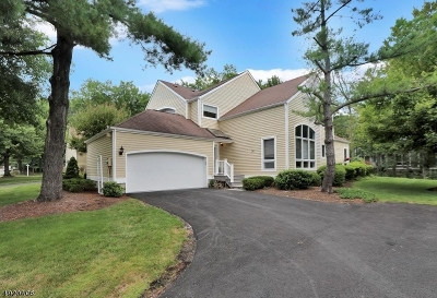 Morris Twp. Condo/Townhouse For Sale: 24 Sherwood Dr