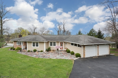 Woodland Park Single Family Home For Sale: 920 Rifle Camp Rd