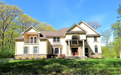 Chester Twp. NJ Single Family Home For Sale: $879,900