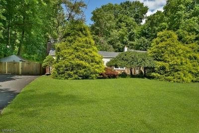 Glen Gardner Boro, Hampton Boro, Lebanon Twp. Single Family Home For Sale: 119 Hillside Ter