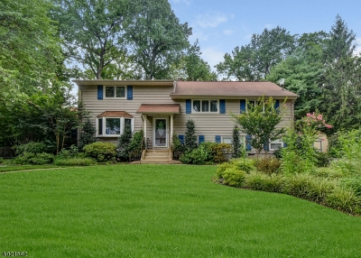 Cranford Twp. Single Family Home For Sale: 105 Edgewood Rd