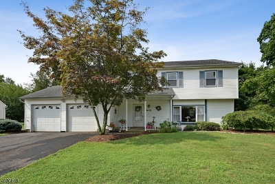 Hillsborough Twp. NJ Single Family Home For Sale: $379,900