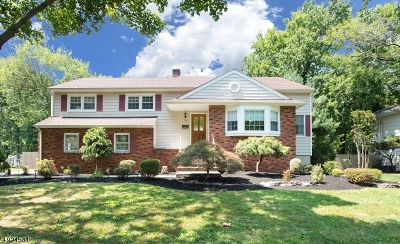 Westfield Town Single Family Home For Sale: 73 Nomahegan Dr