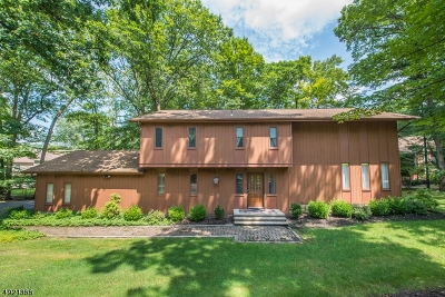 Randolph Twp. Single Family Home For Sale: 4 Spring Hill Ct