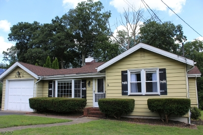 Parsippany-Troy Hills Twp. Single Family Home For Sale: 162 River Dr