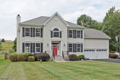 Sparta Twp. Single Family Home For Sale: 114 Valley View Trl