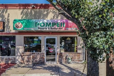 Roselle Park Boro Commercial For Sale: 211 E Westfield Ave