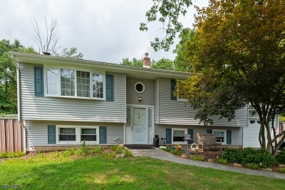 Martinsville Single Family Home For Sale: 53 Shady Ln