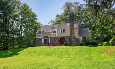 Mendham Twp. NJ Single Family Home For Sale: $619,900