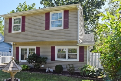 Parsippany-Troy Hills Twp. Single Family Home For Sale: 38 Calumet Ave