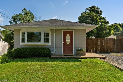 Mount Olive Twp. Single Family Home For Sale: 13 Outlook Ave