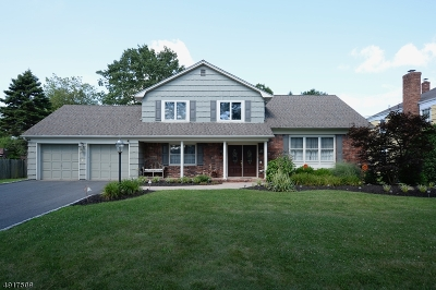 Wayne Twp. Single Family Home For Sale: 817 Valley Rd