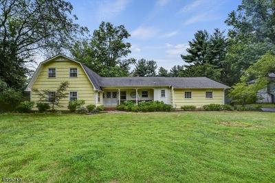 Rocky Hill Boro Single Family Home For Sale: 2 Merritt Ln
