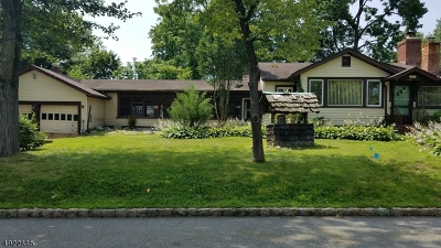 Parsippany-Troy Hills Twp. Single Family Home For Sale: 43 Iroquois Ave