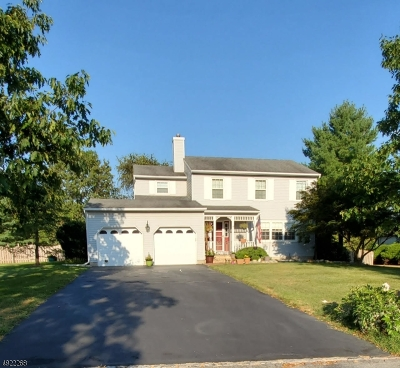 Flemington Boro, Raritan Twp. Single Family Home For Sale: 41 Redwood Ter
