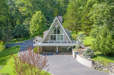 Alexandria Twp., Frenchtown Boro Single Family Home For Sale: 288 Woolf Rd