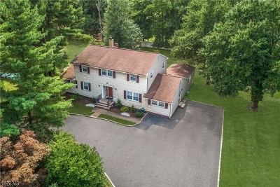 Edison Twp. Single Family Home For Sale: 271 Plainfield Rd