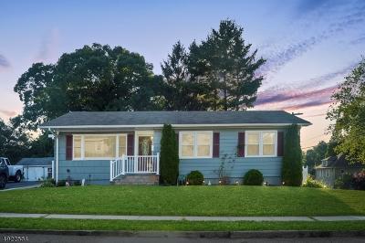 Dover Town Single Family Home For Sale: 28 Hillside Ave