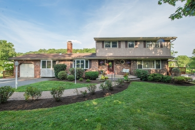 Boonton Twp. Single Family Home For Sale: 200 Powerville Rd