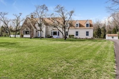 Readington Twp. Single Family Home For Sale: 460 Route 31
