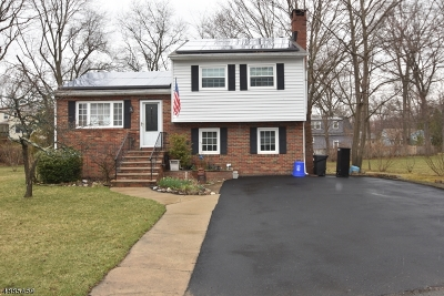 Denville Twp. Single Family Home For Sale: 21 Riverside Dr