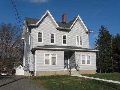 Somerset County Multi Family Home For Sale: 225 Somerset St