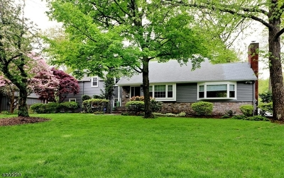 Westfield Town NJ Single Family Home For Sale: $869,000