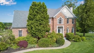 Glen Gardner Boro, Hampton Boro Single Family Home For Sale: 50 Fairfield Dr