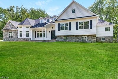 Livingston Twp. Single Family Home For Sale: 4 Winston Dr