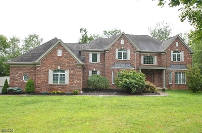 Hanover Single Family Home For Sale: 2 River Park Ct