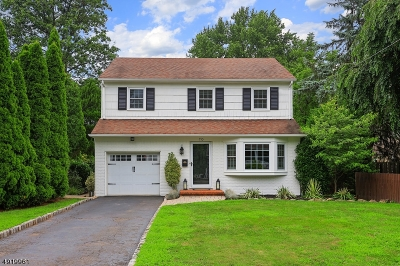 Westfield Town NJ Single Family Home For Sale: $788,000