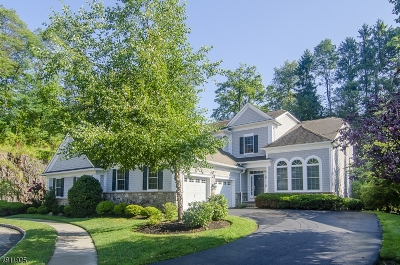 South Orange Village Twp. Single Family Home For Sale: 56 W Tillou Rd