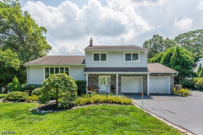 Parsippany-Troy Hills Twp. Single Family Home For Sale: 1 Oakland Ct