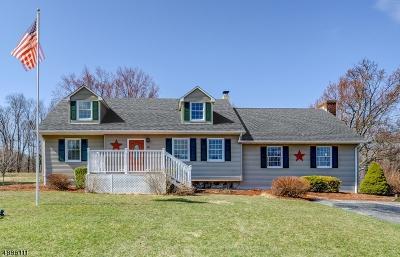 Fredon Twp. Single Family Home For Sale: 14 James Ter