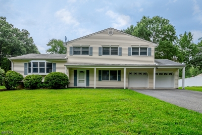 Parsippany Single Family Home For Sale: 17 Stephen Ter