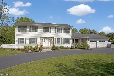 Roxbury Twp. Single Family Home For Sale: 154 S Hillside Ave