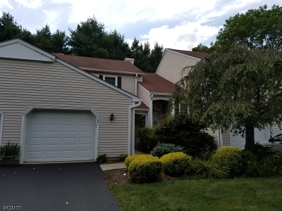 Newton Town Condo/Townhouse For Sale: 137 Carriage Ln