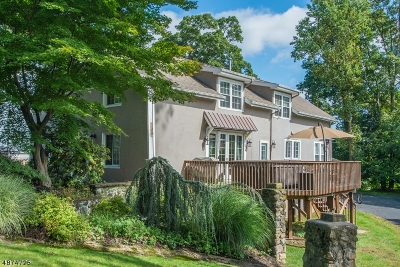 Boonton Town Single Family Home For Sale: 528 Morris Ave