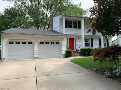 Edison Twp. Single Family Home For Sale: 7 Mayling Ct