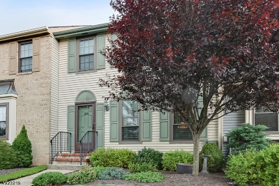 Hillsborough Twp. Condo/Townhouse For Sale: 210 Amherst Ct