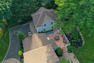 Mendham Boro NJ Single Family Home For Sale: $939,900