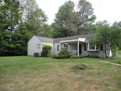 Montgomery Twp. Single Family Home For Sale: 491 Route 518
