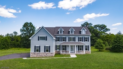 Hunterdon County Single Family Home For Sale: 2 Cirrus Ln