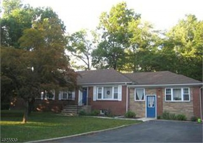 Morris Twp. Single Family Home For Sale: 91 Harter Rd