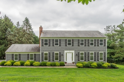 Mendham Boro NJ Single Family Home For Sale: $739,000