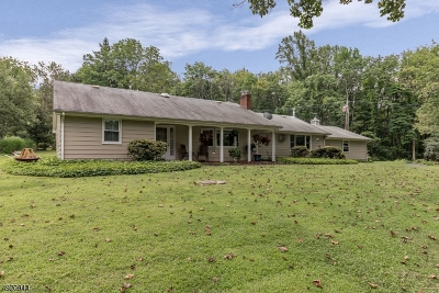 Holland Twp. Single Family Home For Sale: 460 Ellis Rd