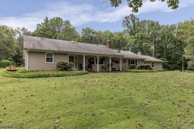 Hunterdon County Single Family Home For Sale: 460 Ellis Rd