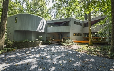 Hunterdon County Single Family Home For Sale: 24 Lakeview Rd